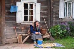 Alte Frau, die Ernte für Winter vorbereitet Stockfoto
