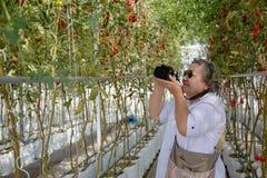 Alte Frau, die Foto bei der Gartenarbeit macht lizenzfreie stockfotografie