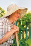 Alte Frau, die im Garten arbeitet Stockbild