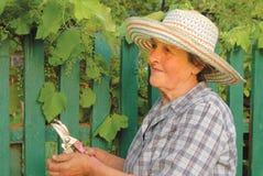 Alte Frau, die im Garten arbeitet Stockbilder