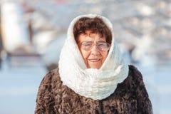 Alte Frau, die am Winterpark geht Lizenzfreies Stockfoto