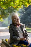 Alte Frau im Park Stockfotografie