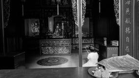 Alte Frauen, die Ehrerbietung zu Buddha-Bild im Tempel zahlen lizenzfreie stockfotos