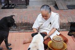 Alte Frauen geben dem Hund Lebensmittel Lizenzfreies Stockfoto