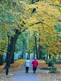 Alte Frauen im Herbstpark Stockfotografie