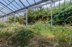 Alte Gartenarbeit Lizenzfreie Stockbilder