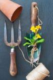 Alte Gartenarbeithilfsmittel Lizenzfreies Stockbild