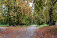 Alte Gasse im Herbst Stockbilder