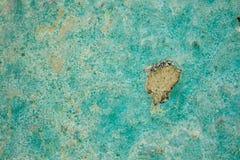 Alte gebrochene grüne Wand-Beschaffenheit mit Adobe und trockenem Stroh Stockbild