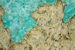 Alte gebrochene grüne Wand-Beschaffenheit mit Adobe und trockenem Stroh Stockfoto