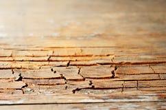 Alte gebrochene hölzerne Beschaffenheit Brown-Schmutzes Stockfotografie