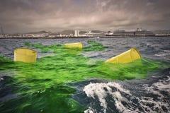 Alte gelbe Fässer für Biohazard vergeuden Antrieb auf schmutzigem grünem Wasser Stockfotografie