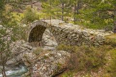 Alte Genoese Brücke über Fluss in Korsika Stockfotografie