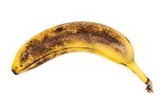 Alte geschlagene Banane Lizenzfreie Stockbilder