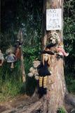 Alte gespenstische Puppen, die in einem Baum in Mexiko City hängen Lizenzfreie Stockbilder