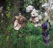 Alte gespenstische Puppen, die in einem Baum in Mexiko City hängen Lizenzfreie Stockfotos