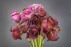 Alte getrocknete Rosen Lizenzfreie Stockfotografie