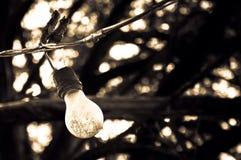 Alte Glühlampe, die an der Linie hängt Lizenzfreies Stockfoto