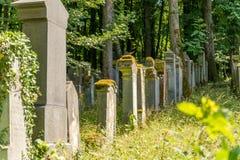 Alte Gräber in einem Wald Lizenzfreie Stockfotografie