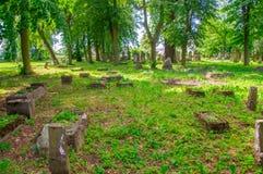 Alte Gräber am größten mennonitischen Kirchhof im Norden von Polen Stockbilder