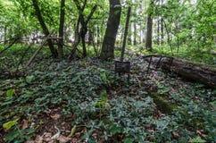 alte Gräber im Wald Stockfotografie