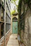 alte grüne hölzerne Tür und eine Wand bedeckt mit grünem Blatt Lizenzfreies Stockfoto