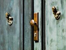 Alte grüne Tür stockbild