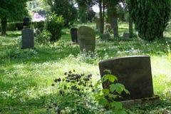 Alte Grabsteine in einem Waldkirchhof stockbild