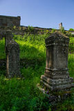 Alte Grabsteine werden mit Gras überwuchert lizenzfreies stockbild