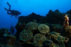 Alte Granaten innerhalb des Wracknamens ist SS Thistlegorm stockbilder