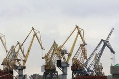 Alte gru del trasporto in porto Fotografia Stock Libera da Diritti