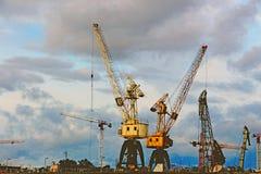 Alte gru nel porto del carico Fotografia Stock