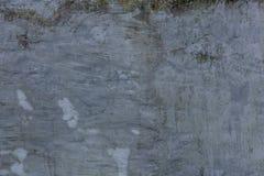 Alte grungy Beschaffenheit, graue Betonmauer mit Moos Lizenzfreie Stockfotografie