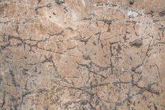 Alte grungy Betonmauerbeschaffenheit für Hintergrund und Design Lizenzfreie Stockbilder