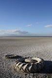 Alte Gummireifen in dem Salton Meer Lizenzfreie Stockfotos