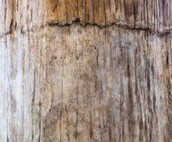 Alte hölzerne Barke Stockbild