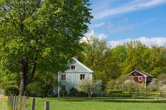 Alte hölzerne Bauernhäuser in Schweden Stockfoto