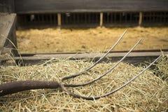 Alte hölzerne Bauernhof-Pitchfork-Werkzeug-Werkzeug-Scheunen-Ausrüstung Stockbild
