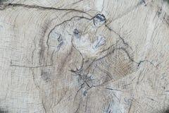 Alte hölzerne Baum-Ring-Beschaffenheit Lizenzfreies Stockbild