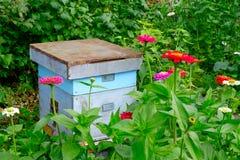Alte hölzerne Bienenstöcke im Garten und in irgendeiner Blume Stockbilder