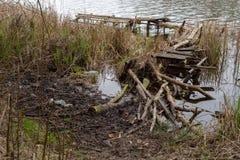 Alte hölzerne defekte Fischereibrücke Inaktiv Platz für die Fischerei am See stockfotos