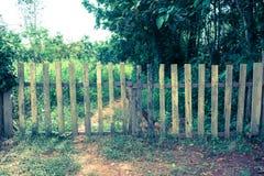 Alte hölzerne Einschließung mit Tor im Wald in der Landschaft Grüner g lizenzfreies stockbild
