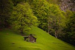 Alte hölzerne Hütte nahe dem Berg und dem Wald Stockbild