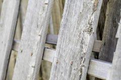 Alte hölzerne Kiste Rusty Nails Stockbilder
