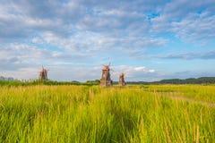 Alte hölzerne Mühlen das Feld im Park, Südkorea Stockbilder