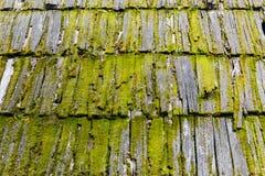 Alte hölzerne moosige Schindeln auf einem Dach eines Hauses lizenzfreie stockfotografie
