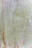 Alte hölzerne Planken knackten durch einen rustikalen Hintergrund Stockfotografie
