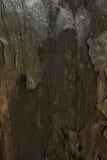 Alte hölzerne Planken knackten durch einen rustikalen Hintergrund Stockfotos