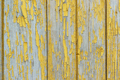 Alte hölzerne Planken mit Resten des blattlosen Ockers der Farbe Schalenfarbe deckt die Beschaffenheit des Holzes auf Stockfoto