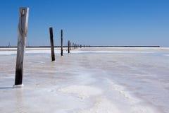 Alte hölzerne Pole auf dem See Lizenzfreies Stockbild